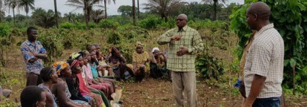 Header_960_210_UNIDO_Sierra Leone